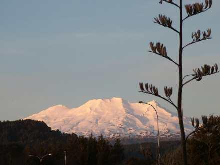 Home Based Business Travel- Snow Skiing Mt Ruapehu New Zealand